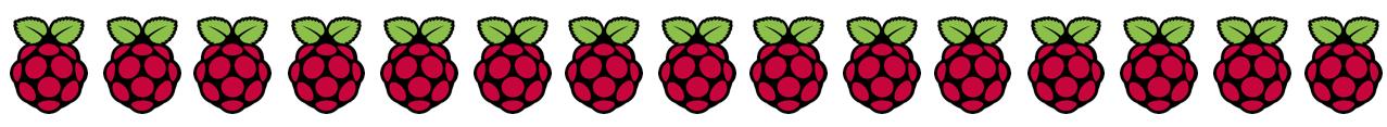 Raspberry Pi Logo Divider: Best Raspberry Pi 4 Starter Kits
